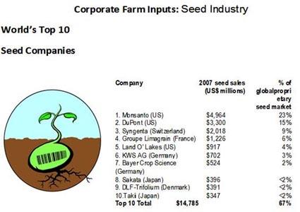 compani seed