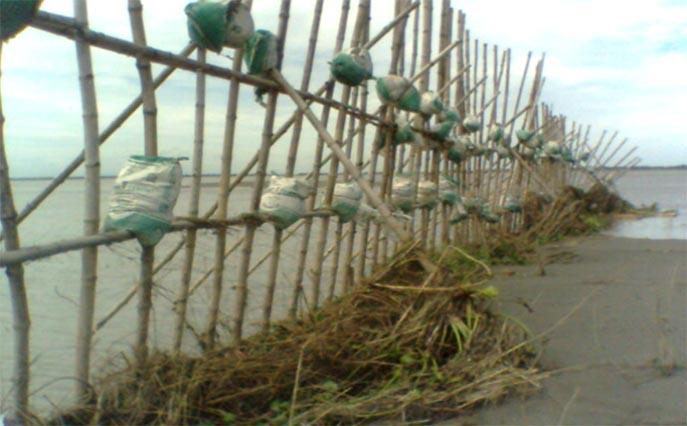 Bamboo binding